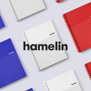 hamelin-notebooks_be_notewoorthy
